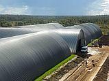 Строительство зернохранилищ, зерноскладов, хранилищ злаковых культур, фото 8