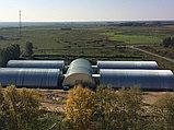 Строительство зернохранилищ, зерноскладов, хранилищ злаковых культур, фото 9