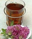 Клевер луговой, цветы и трава, 20 фильтр пакетов, фото 6