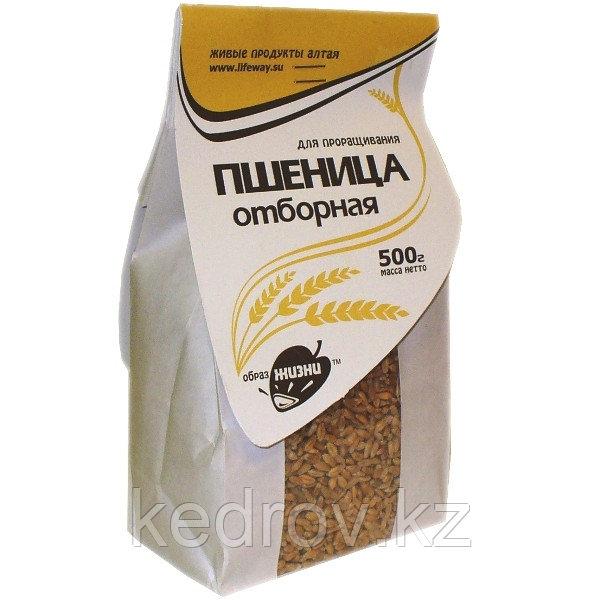Пшеница для проращивания 500гр, крафт-пакет
