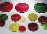 Лабораторная посуда, фото 4