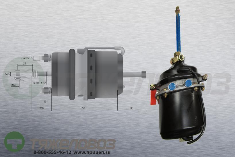 Энергоаккумулятор тип 24/24 Neoplan (барабанный тормоз) 11013233