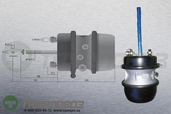 Энергоаккумулятор тип 30\30 Renault (барабанный тормоз) 5021170325