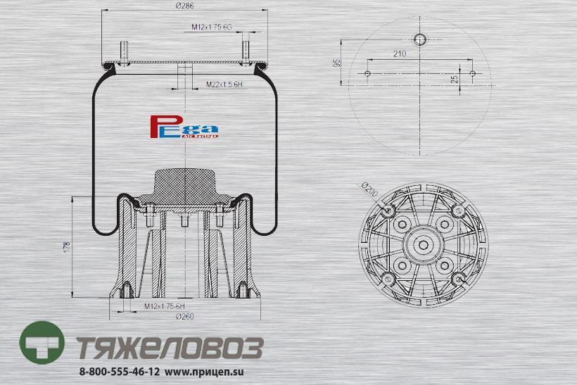 Пневморессора SAF (с пластиковым стаканом) 3229003100 (P10.4023.CP03)