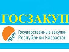 Установка и настройка портала Государственных закупок, фото 2