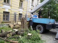 Срезка деревьев