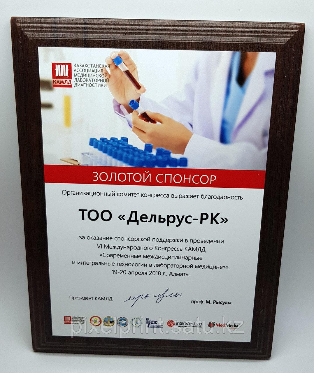 Наградной диплом (плакетка)
