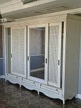 Распашной шкаф из МДФ крашенного , фото 4