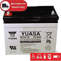 Аккумулятор Yuasa REC36-12 для инвалидных колясок, электрокаров, гольф-каров