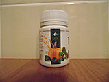 Масло тыквы в капсулах 100шт., фото 2
