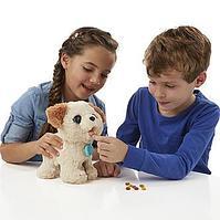 Интерактивные игрушки со скидкой