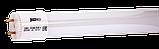 Лампа светодиодная PLED T8-600GL 10Вт линейная 6500К холод. бел. G13 800лм 220-240В JazzWay, фото 4