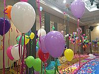 Ходячие шары, фото 1