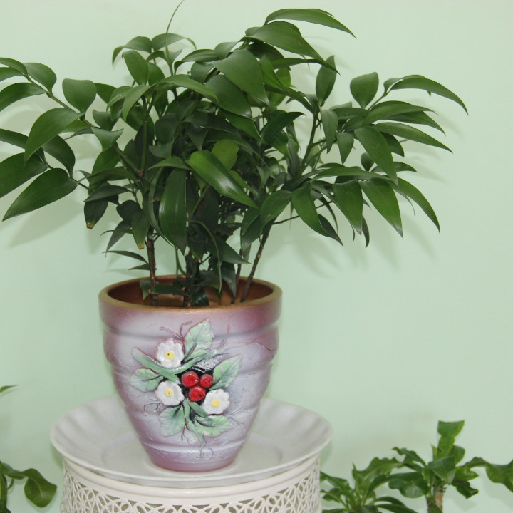 Керамический горшок для цветов .Объемом 2 литра
