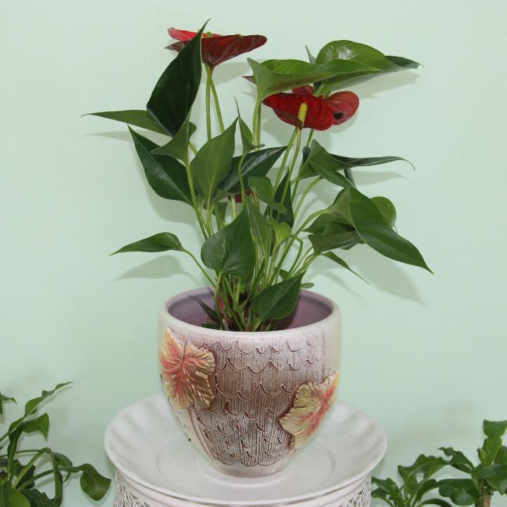 Керамический горшок для цветов.1л