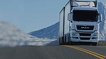 Перевозка грузов автотранспортом Москва-Алматы(реф)