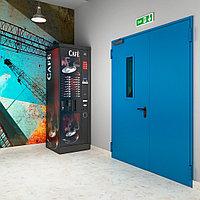Техническая двухстворчатая остекленная дверь. Размер до 2200х1300 мм.
