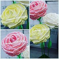 Бутон цветов