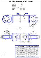 Г/цилиндр ЦГ-125.80х1100.11  ковш, стрела ЕК  18 и рукоять ЕК-14