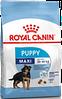 Сухой корм для щенков крупных пород от 2-х до 15 месяцев Royal Canin Maxi Puppy
