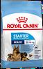 Royal Canin Maxi Starter сухой корм для щенков до 2х месяцев, беременных и кормящих сук крупных пород