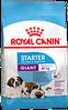 Сухой корм для щенков до 2х месяцев, беременных и кормящих сук очень крупных пород Royal Canin Giant Starter