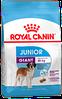 Сухой корм для щенков очень крупных пород от 8 до 18/24 месяцев Royal Canin Giant Junior