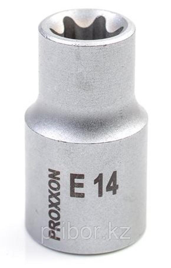 "23384 Proxxon Головка для внешней звездочки ТХ на 1/2"", E 14"