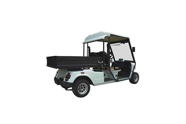 Гольфкар 2-х местный с грузовым ящиком на 300 кг EG2048HCXR