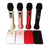 Караоке Микрофон MicMagic L-598, фото 2