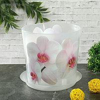 Горшок для орхидей с поддоном «Деко», 1,2 л цвет белый