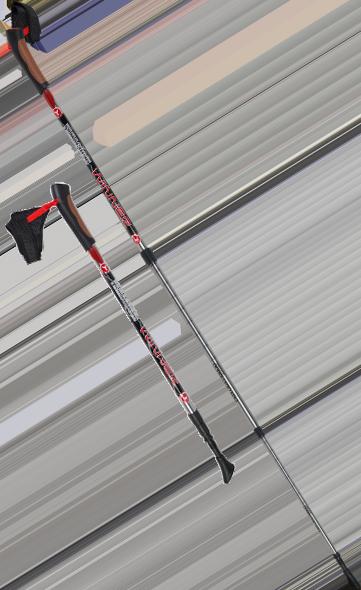 Палки для скандинавской ходьбы Yamaguchi Winner