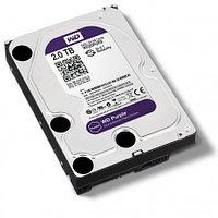 Western Digital Жесткий диск для видеонаблюдения HDD 2 Tb WD20PURZ