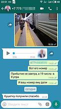sea4azkrxuo.jpg