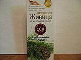Кедровая Живица С Мумиё, 100 мл, фото 2