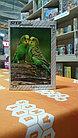 Пазл Золотая серия-9 (животные) 120 элементов (серия 8 шт), фото 3