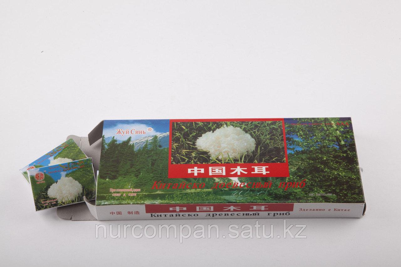 Белый Древесный Гриб