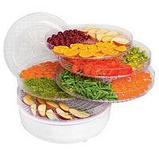 Сушилка для овощей и фруктов с терморегулятором, фото 2