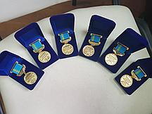 Медали и литые значки на заказ по индивидуальному заказу