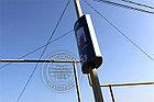 Лайтбокс нового поколения - выпуклый на столб, фото 2