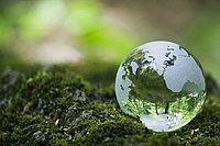 Пректирование «Оценка воздействия на окружающую среду» и раздел «Охрана окружающей среды»