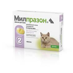 Милпразон для котят