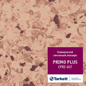 Коммерческий гомогенный линолеум PRIMO PLUS - Primo 307