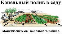 Капельные  ленты, трубки, фитинги и фильтры для полей и садов, фото 1