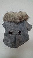 Пальто для собак и кошек, фото 1