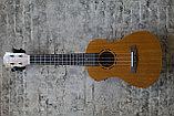 Электро-укулеле КСС, фото 2