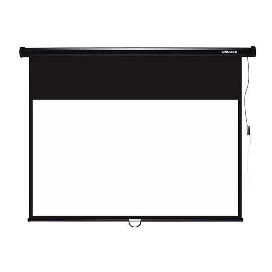 Экран для проекторов Deluxe DLS-M274-210 Настенный 274x210 Matt white Чёрный