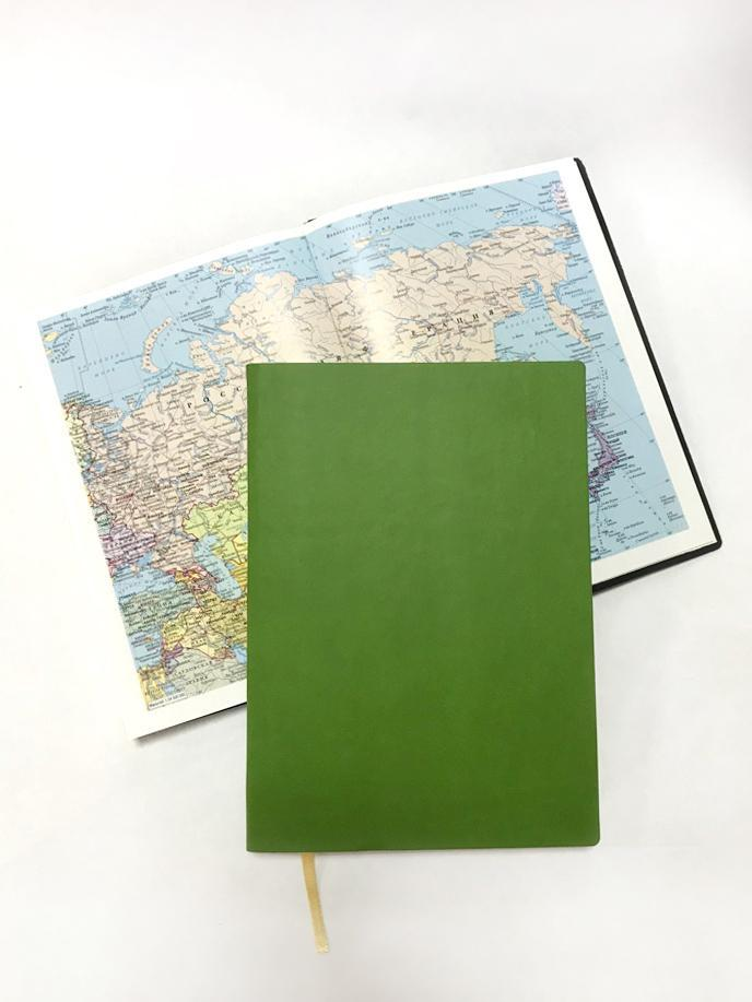 Ежедневник недатированный A5 светло-зеленый