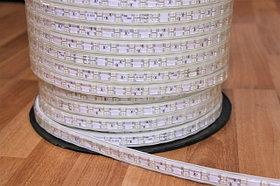 LED ленты 220 v