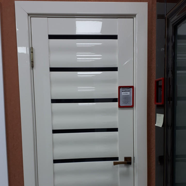 Дверь 76L
